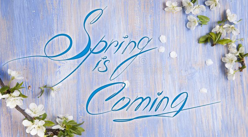 Download Spring Is Coming Text , Spring Blossom Twigs With Bokehlighting Stock Image - Image of leaves, floral: 107764293