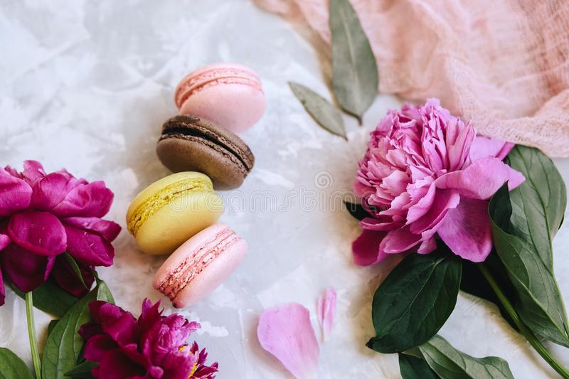 Spring composition: colorful macaroons with purple and pink peonies, green leaves on a light concrete background and a pink cloth royalty free stock photography