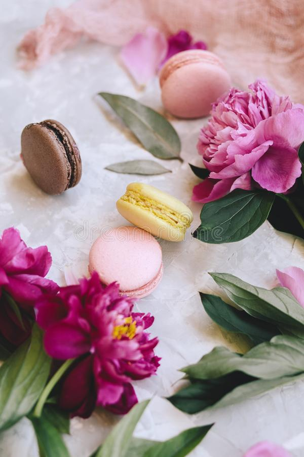 Spring composition: colorful macaroons with purple and pink peonies, green leaves on a light concrete background stock photography