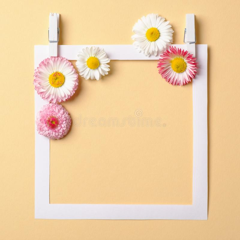 Spring composition made with colorful flowers and paper frame border on pastel yellow background. Creative minimal holiday concept. Flat lay setting. Top view stock photos