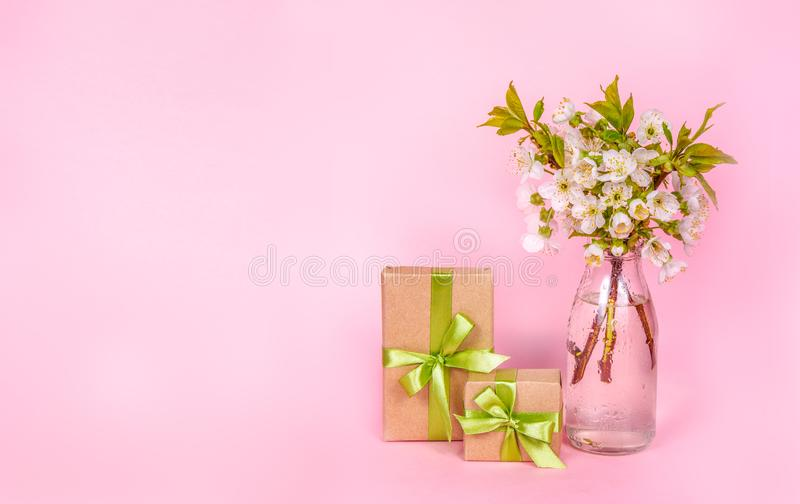 Spring composition, white cherry flowers. Gift boxes on pink background. Copy space stock photography