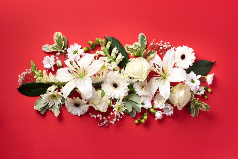 Spring composition of white flowers on red paper background with copy space. Creative layout. Flat lay. Top view. Summer stock photo