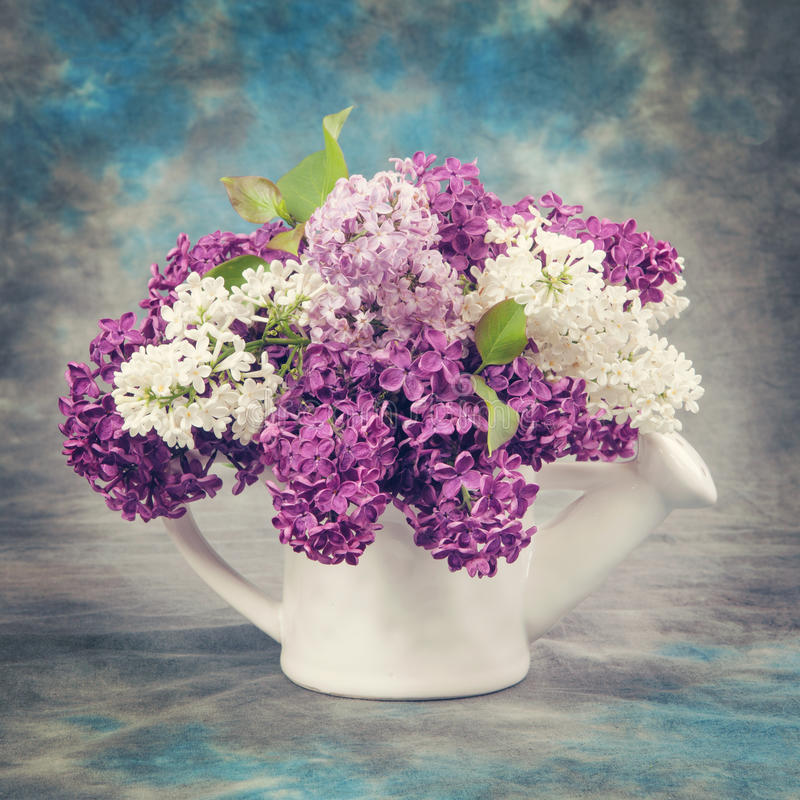Spring concept. Lilac in pitcher Vintage retro hipster style version stock images