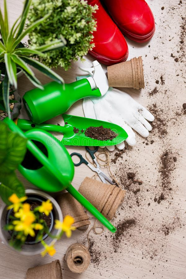 Spring concept - top view of gardening tools and potted plants on wooden table. Background stock photography