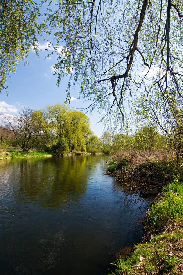 Spring Countryside With River Stock Images