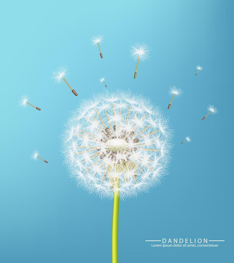 Spring dandelion flower Vector realistic. Sky background soft bokeh illustrations. Spring dandelion flower Vector realistic. Sky background soft bokeh vector illustration
