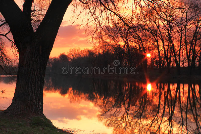 Download Spring Dawn stock photo. Image of beams, fisherman, rays - 19743386