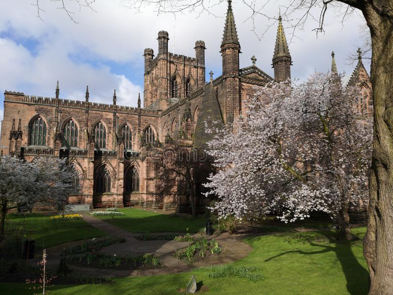 Spring day around Chester Cathedral, Chester, Cheshire, United Kingdom stock photo