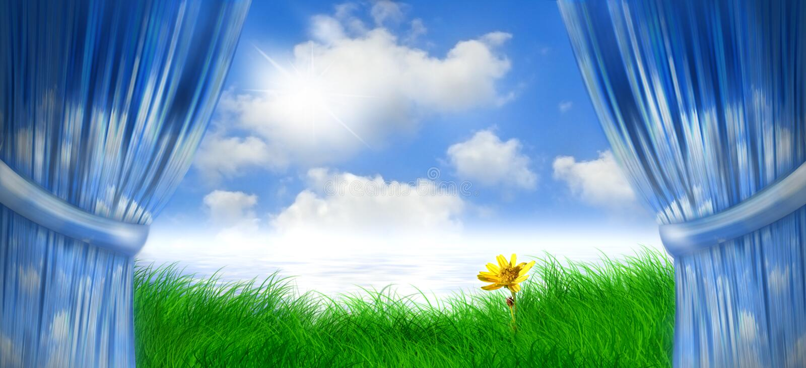 Spring day daisey. Cloudy curtains part to welcome a spring bright sunny day on a grassy field with one lone flower