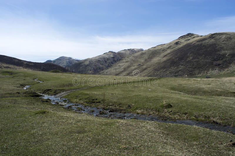 Spring day in the foothills of the Altai. royalty free stock photo