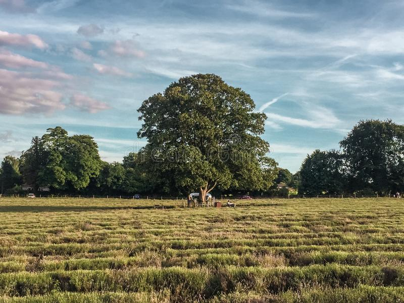 Spring days. The days in the country side of England stock images