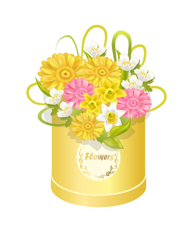 Spring Delicious Flower Colorful Anemones Box royalty free illustration