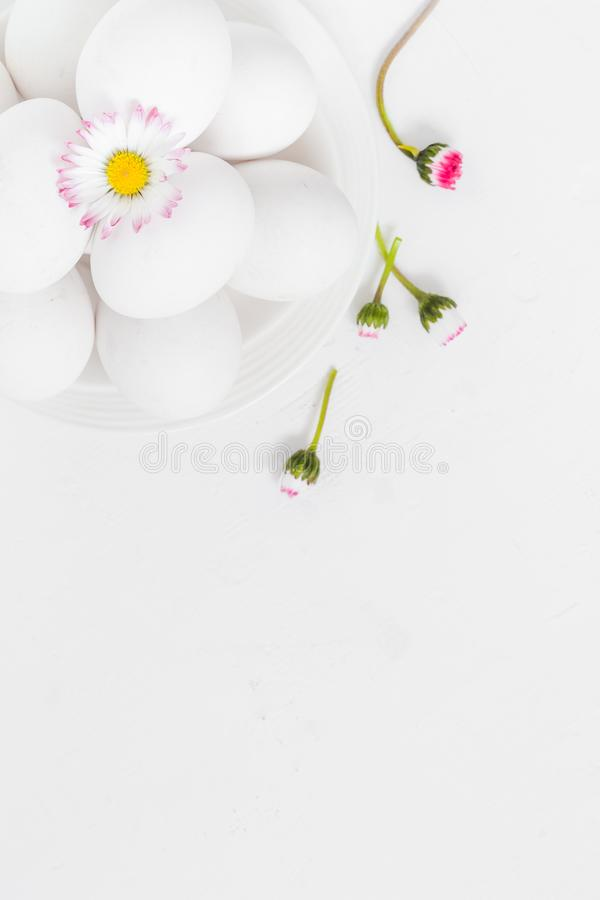 Spring Easter background with white eggs Daisy flowers stock photography