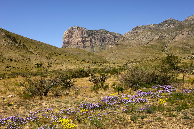 Spring at El Capitan, West Texas stock image