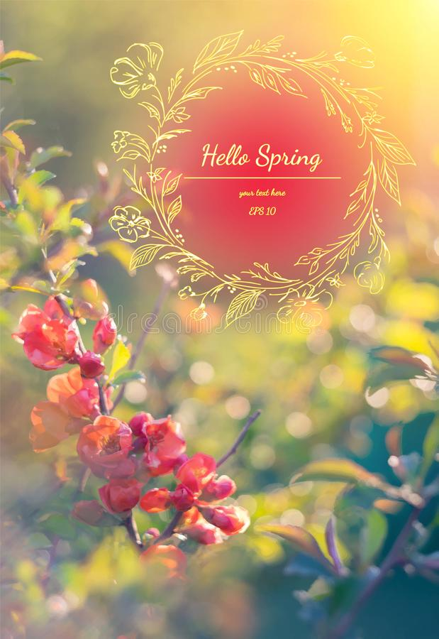 Spring elegant background with red quince. Hello Spring. Watercolor greeting card of flowers. Vector illustration.  stock image