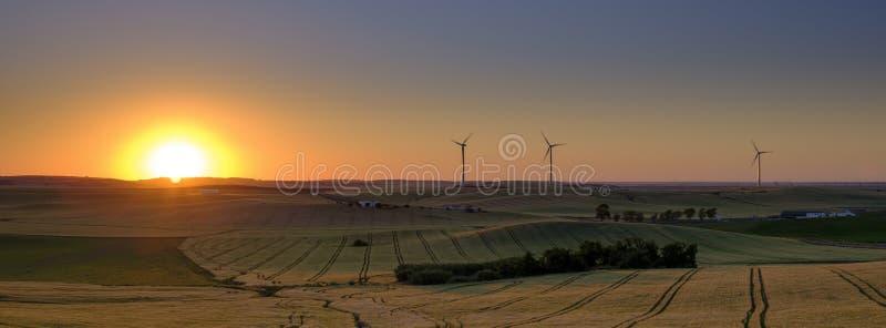 Spring evening light and sunset on the landscape near Arroyo del Olivillo between Sanlucar and Jerez de la Frontera, Cadiz, stock image