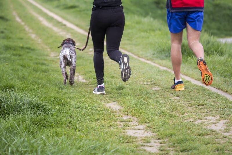 Spring för ung man och kvinnamed hunden royaltyfria bilder