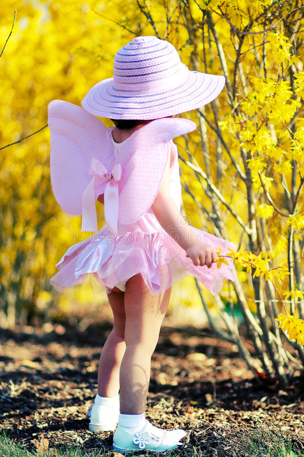 Download Spring fairy4 stock photo. Image of gardening, fairy, beauty - 4983052