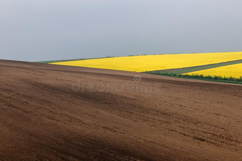 Abstract wavy fields on South Moravia, Czech republic. Spring farmland on hills of South Moravia. Czech plowed and yellow spring fields. Rural agriculture scene royalty free stock image