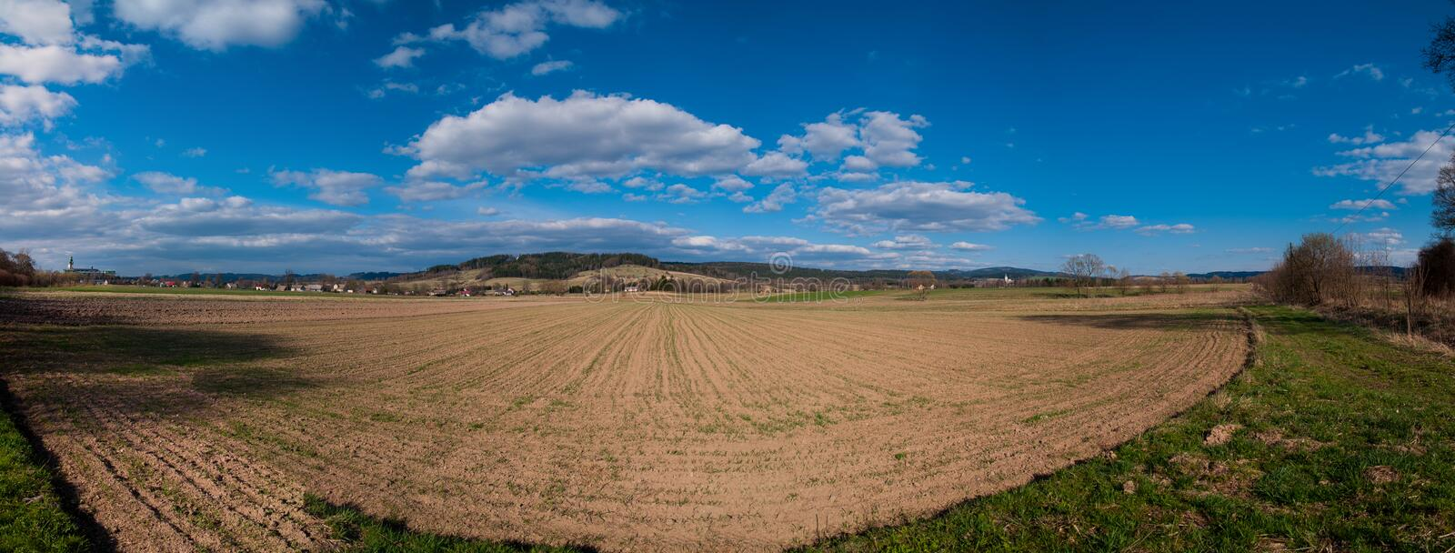 Spring field, Panorama royalty free stock images