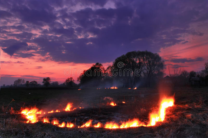 Spring Fires In A Field Stock Photos