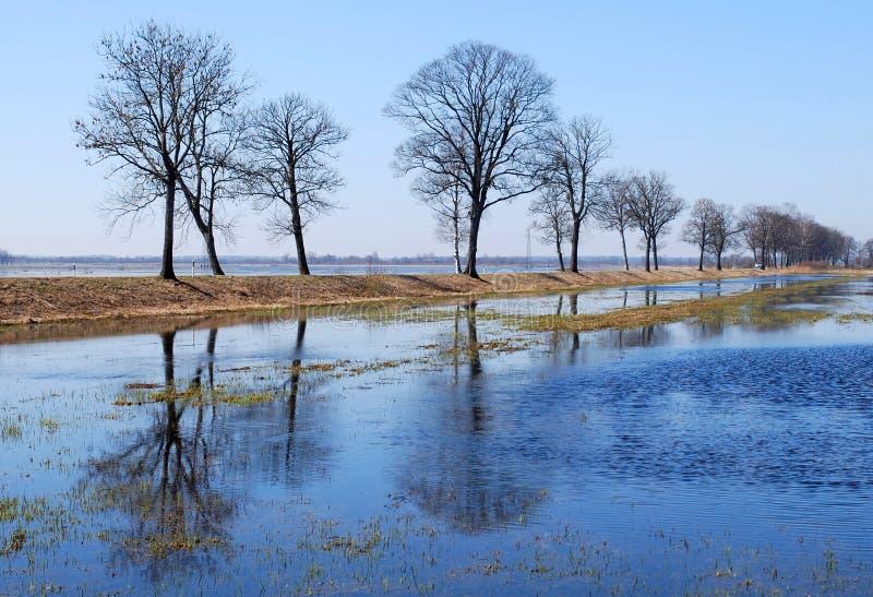 Spring flood royalty free stock photo