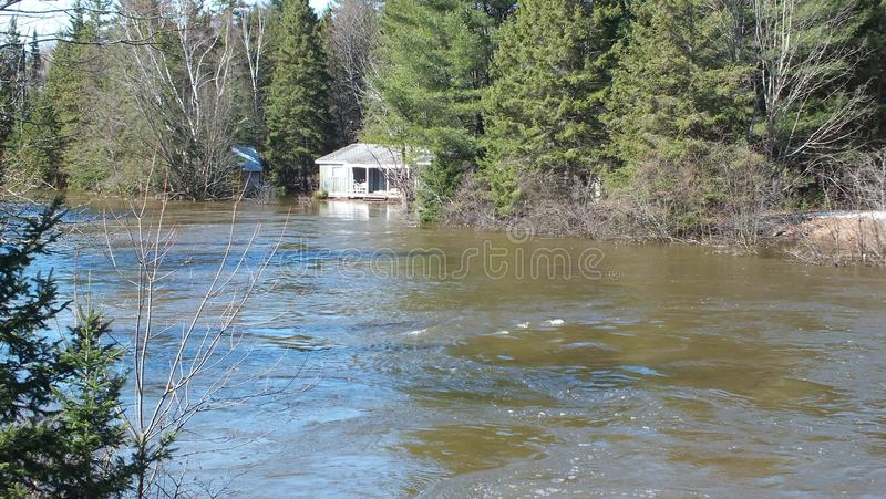 Spring Flood in Huntsville, Ontario, 2013 royalty free stock photo