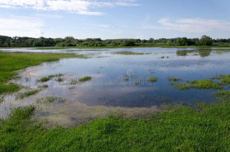 Spring flooding. Flood basin of the Tisza River in Tiszalok, Hungary. Hungarian countryside. Overflow of water from the river. Blue sky stock photo