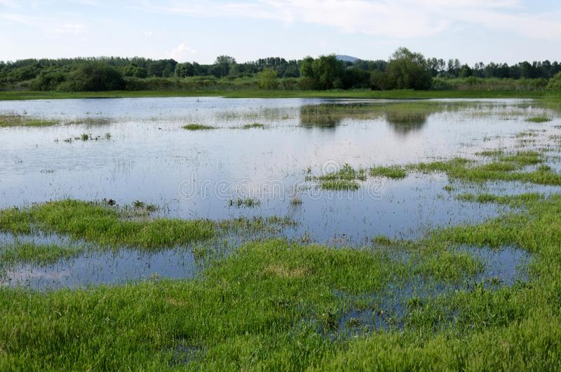 Spring flooding. Flood basin of the Tisza River in Tiszalok, Hungary. Hungarian countryside. Overflow of water from the river. Blue sky stock photos