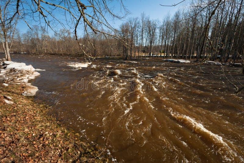 Spring flooding in Jugla river. Springtime flooding with broken bridge in Jugla river latvia royalty free stock photos