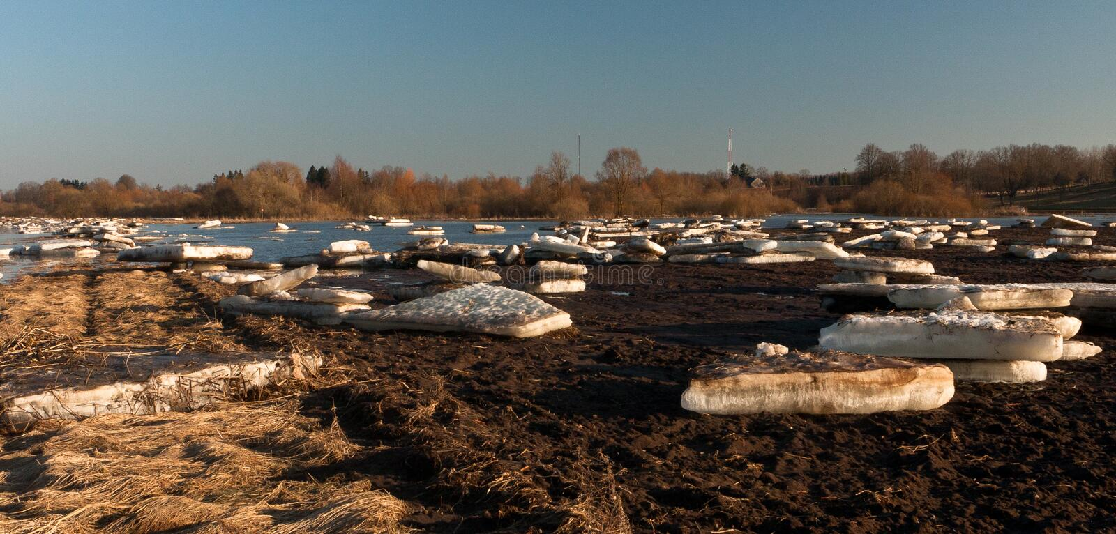 Spring flooding in Lielupe river. Springtime flooding in Lielupe river in latvia royalty free stock photo