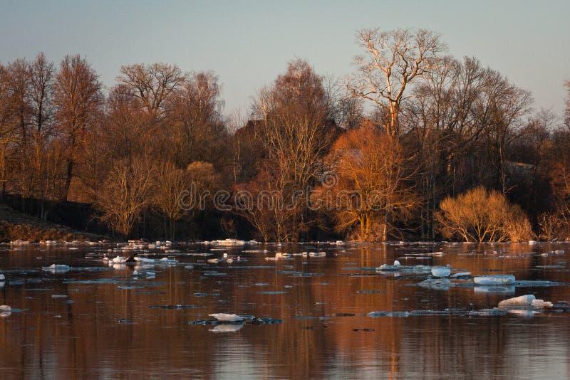 Spring flooding in Lielupe river. Springtime flooding in Lielupe river in latvia stock image