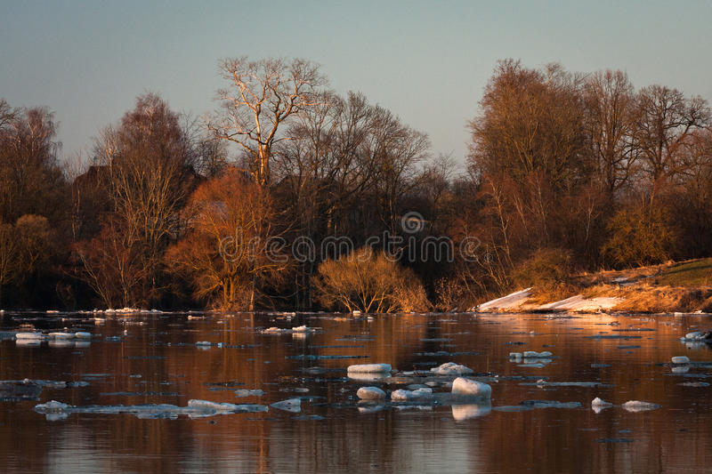 Spring flooding in Lielupe river. Springtime flooding in Lielupe river in latvia royalty free stock photography