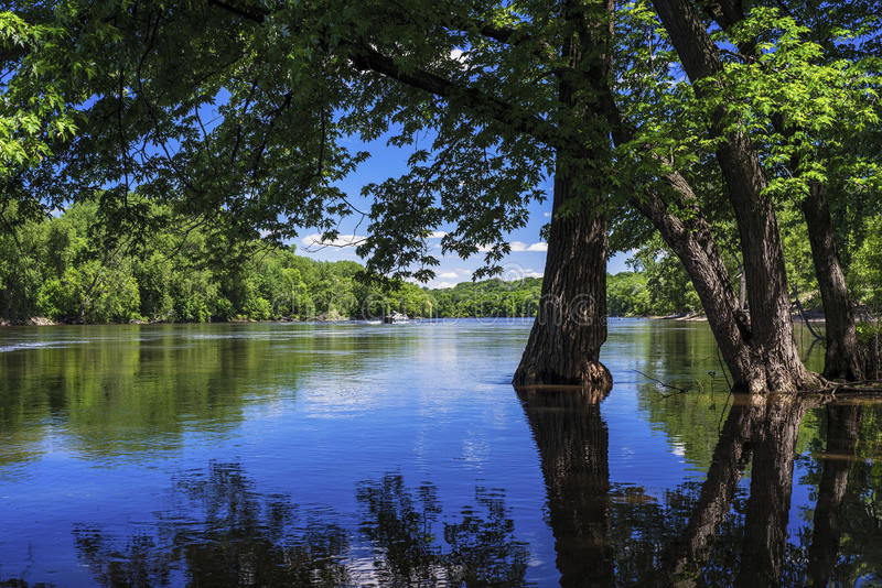 Spring flooding, mississippi river. Spring flooding along the mississippi river, minneapolis, minnesota royalty free stock photos
