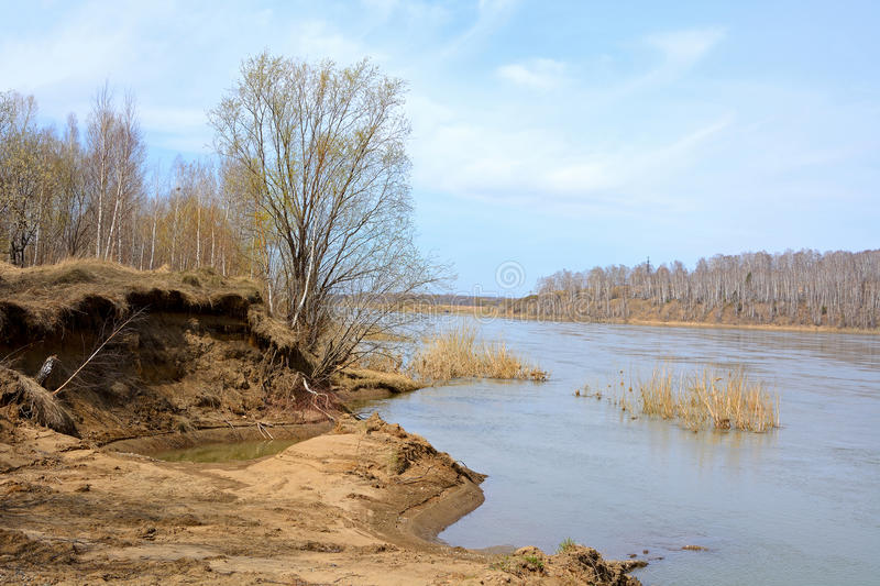 Spring flooding on the river Tom. Spring flooding on the Siberian river the Tom, Kemerovo region stock photography