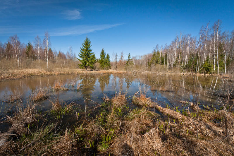 Spring flooding. Springtime flooding in rivers with ice royalty free stock photos