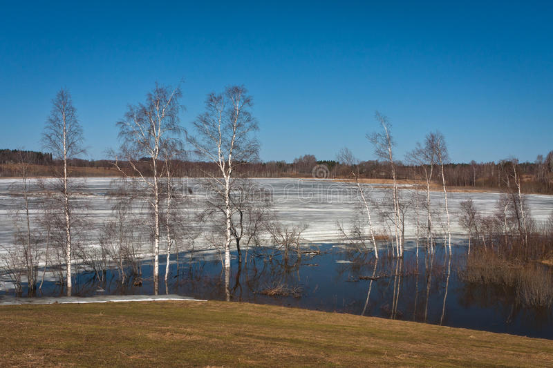 Spring flooding. Springtime flooding in rivers with ice royalty free stock image