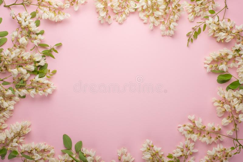Spring floral background, textures and wallpaper. Flat white flower flowers on a light pink background, top view, copy space. Fest. Ive greeting card for women stock photo