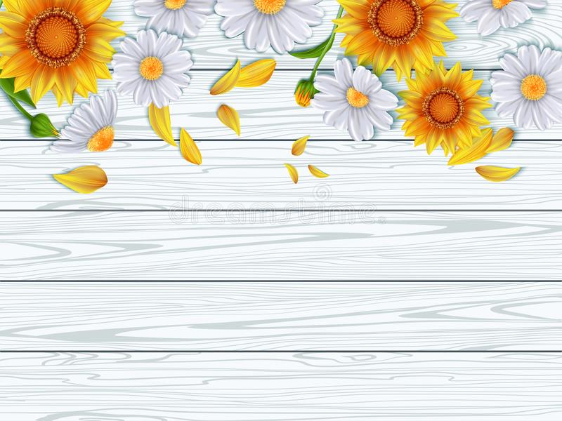 Vintage Spring Floral BackgroundBorder With Chamomile And Sunflower On Background Of Wooden White Boards Vector Illustration