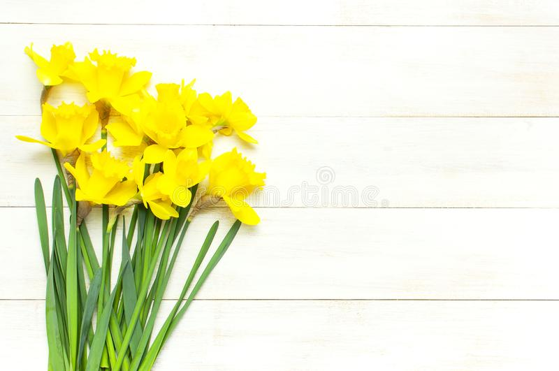 Spring floral background. Yellow narcissus or daffodil flowers on white wooden background top view flat lay. Easter concept, stock photos
