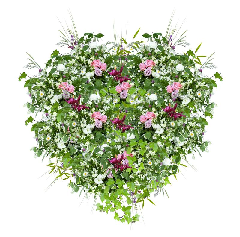 Spring floral heart-shaped decoration with pink roses, fresh green leaves and wild herbs, with white background. Floral spring decoration heart shaped with pink royalty free stock photography