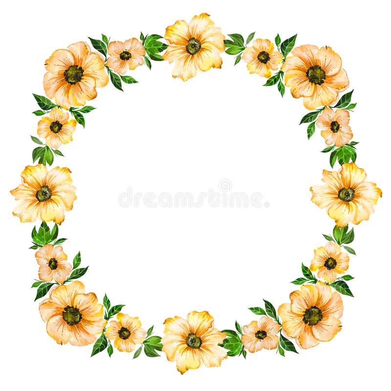 Spring floral illustration. Beautiful yellow flowers with green leaves making frame. Round pattern on white background. Spring floral illustration. Beautiful stock illustration