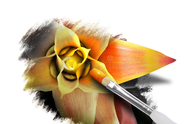 Download Spring Flower Art With Paint On White Stock Image - Image: 23996125