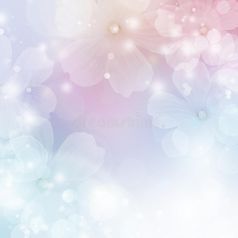 Spring flower background. Abstract floral border of white flowers. Spring blossom background