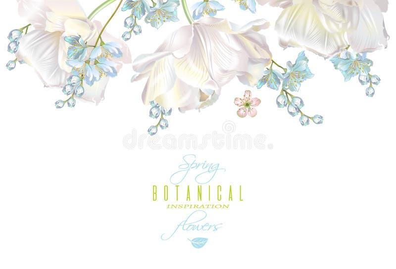 Spring flower banner royalty free illustration