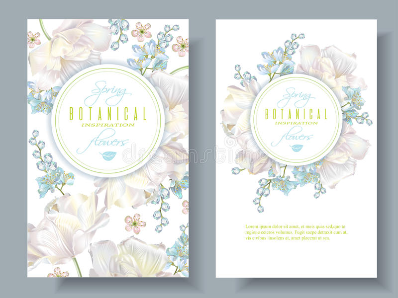 Spring flower banners. Vector spring flower banners with white tulips on white background. Elegant tender design for natural cosmetics, perfume. With place for