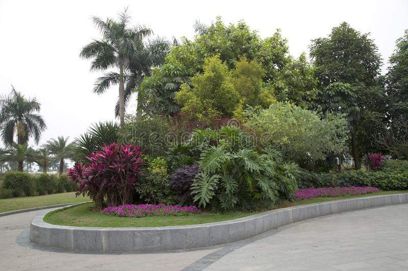 Spring flower bed around plants design in the flower park. City Nanning China royalty free stock image