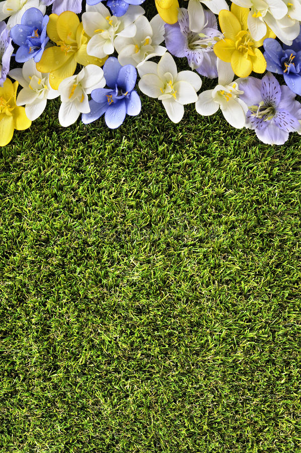 Spring flower border background, grass copy space, vertical. Spring flower border background, grass copy space royalty free stock image