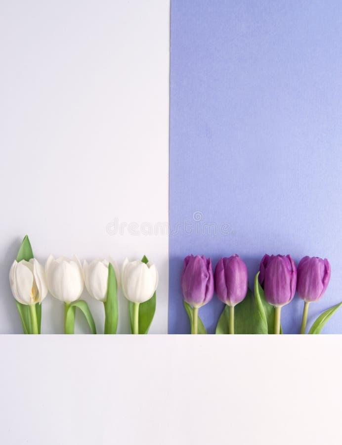 Spring flower design stock illustration