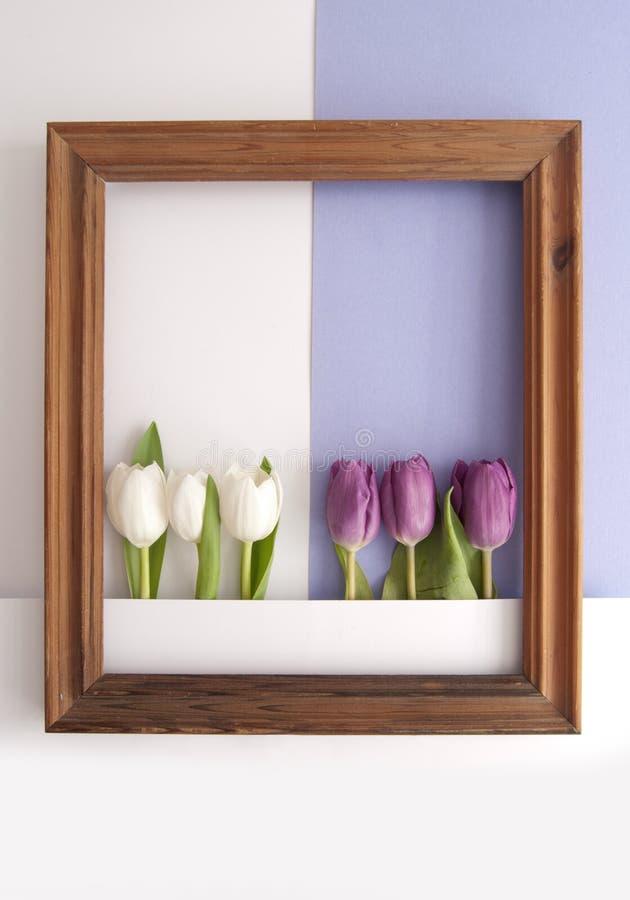 Spring flower frame background stock illustration